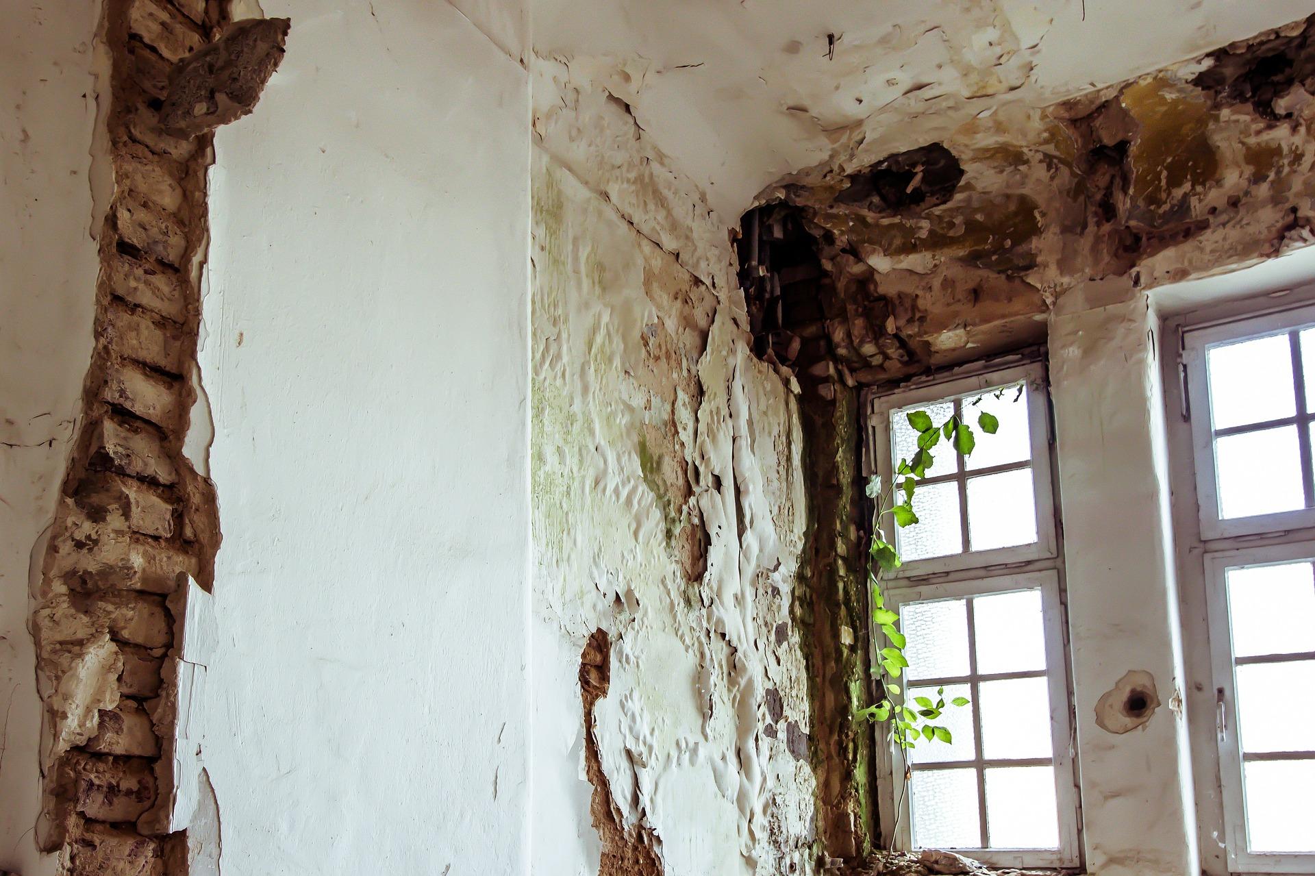 Mauerwerksanierung - So bekämpfen Sie feuchte Wände - Termin Bau Halle