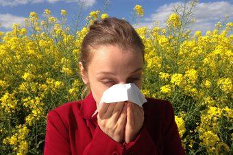 Ökologische Dämmstoffe und Ihre Dämmwirkung