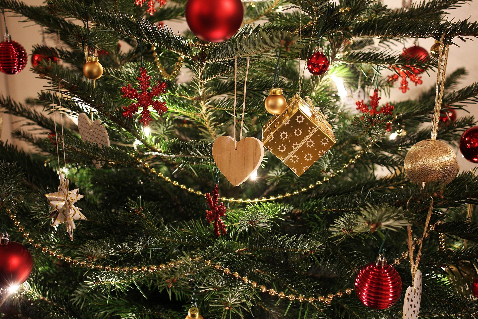 Frohe Weihnachten - Termin Bau wünscht eine besinnliche Weihnachtszeit